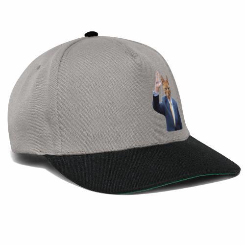 RTE ginger cat - Snapback Cap