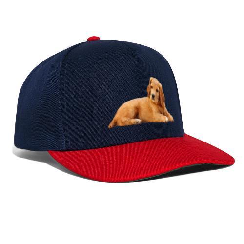 schoenenstelend blafbeest - Snapback cap