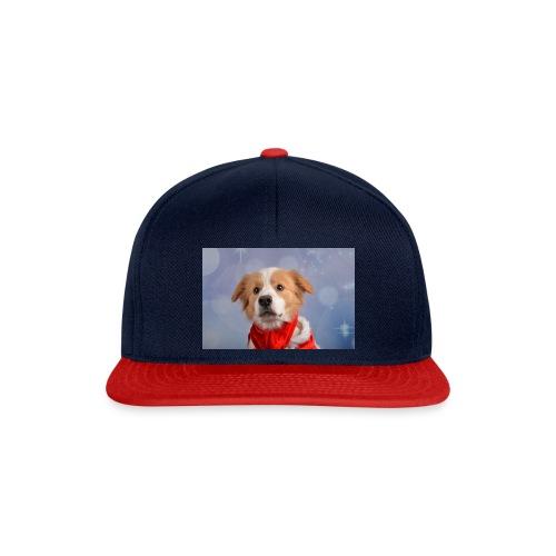 DSC_2040-jpg - Snapback cap