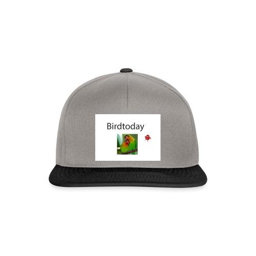 Birdtoday en Knuckels - Snapback cap