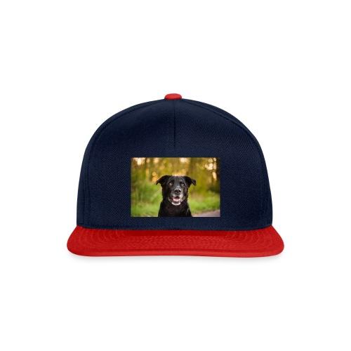 leikbaer - Snapback Cap
