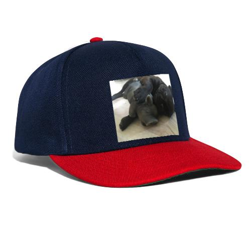 kuschelnder Hund - Snapback Cap