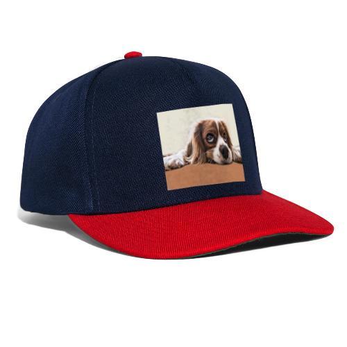 Der Hund - Snapback Cap