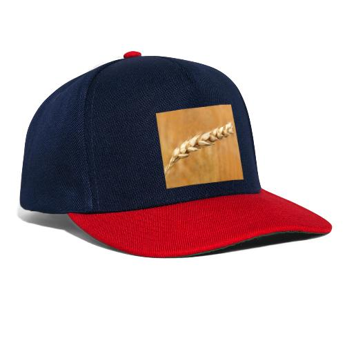 wheat - Snapback Cap