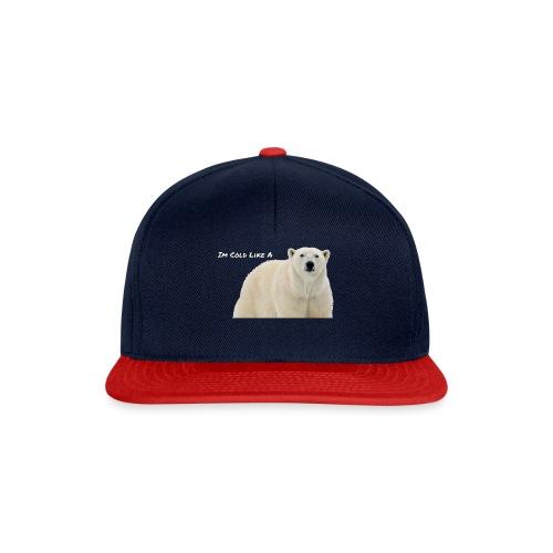 POLAR - Snapback Cap