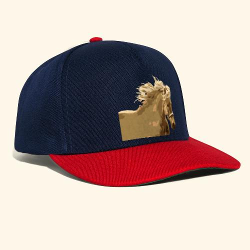 shetland - Snapback Cap