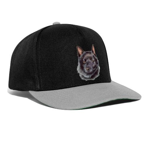 schipperke - M - Snapback Cap