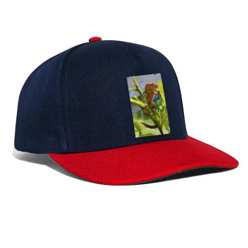 Kronengecko - Snapback Cap