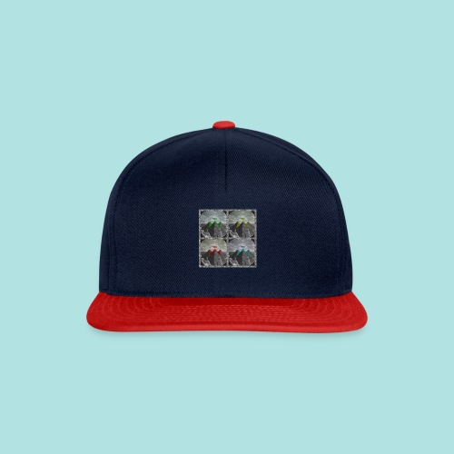 Invasion of the Giza Tombs - Snapback Cap
