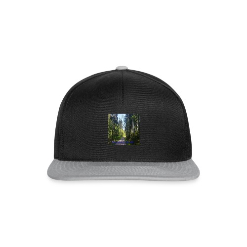 metsämaisema - Snapback Cap