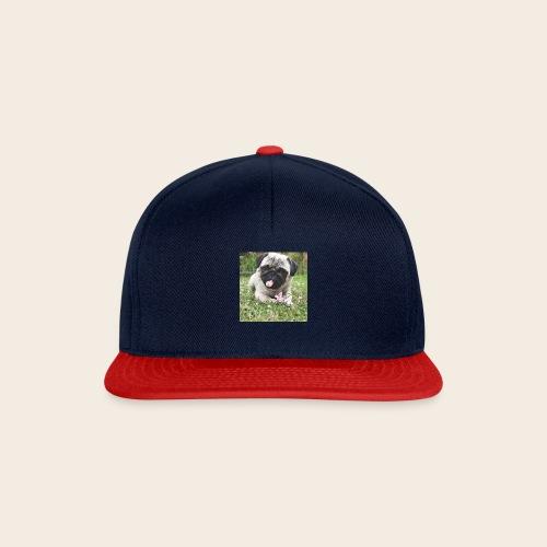 Mops Wiese - Snapback Cap