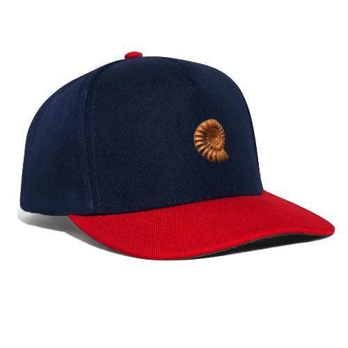 Ammonite Slat - Snapback Cap