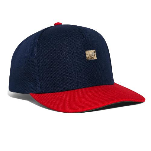 meerkat - Snapback Cap