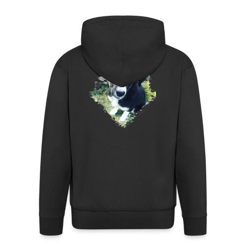 colliegermanshepherdpup - Men's Premium Hooded Jacket