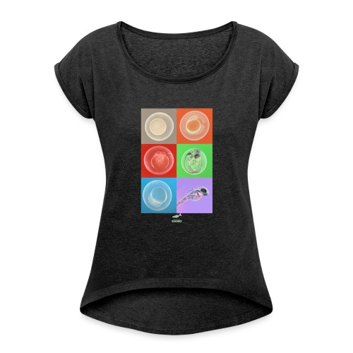Zebra fish developmet T-shirt - Camiseta con manga enrollada mujer