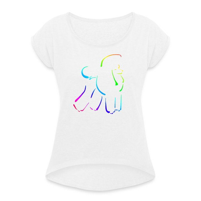 poodle on canvas finish rainbow on black wo text