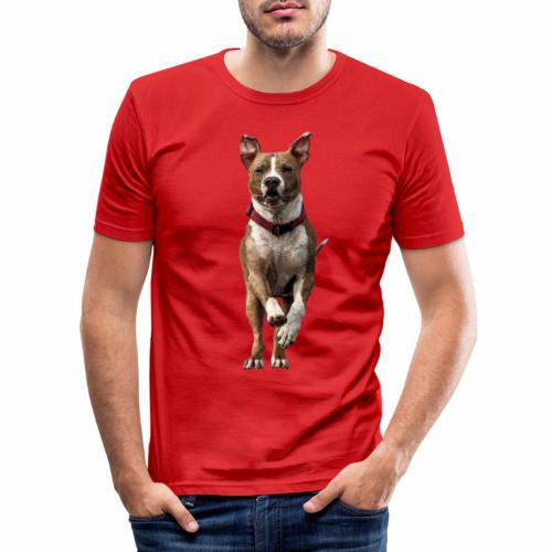 American Stafford - Männer Slim Fit T-Shirt