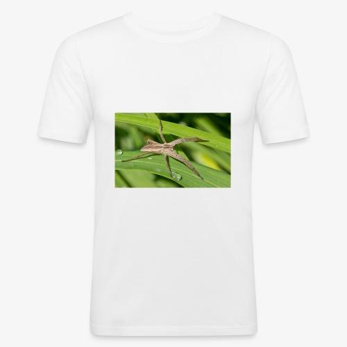 Spinne auf dem Blatt - Männer Slim Fit T-Shirt