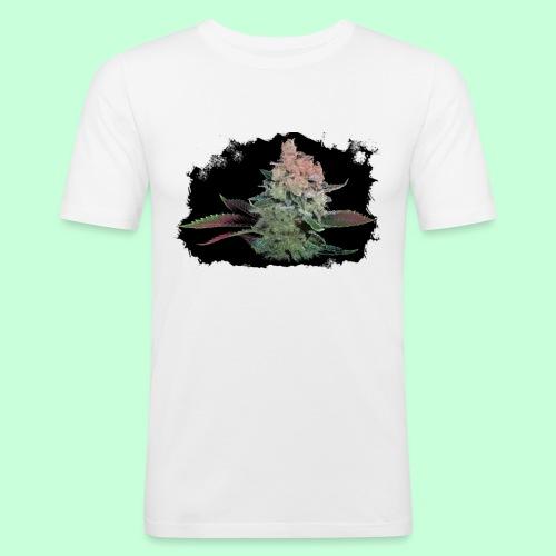 Pflänzchen png - Männer Slim Fit T-Shirt