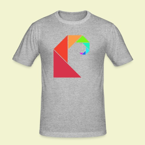swell rainbow - slim fit T-shirt