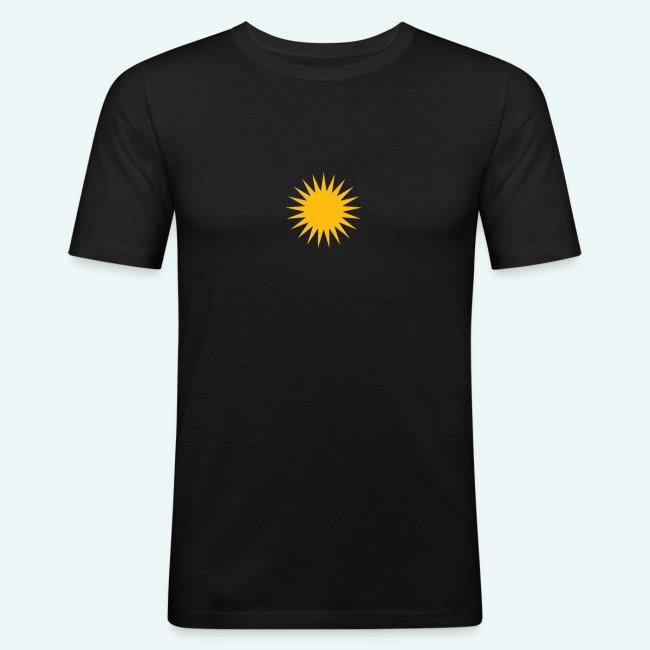 PARMA SUN