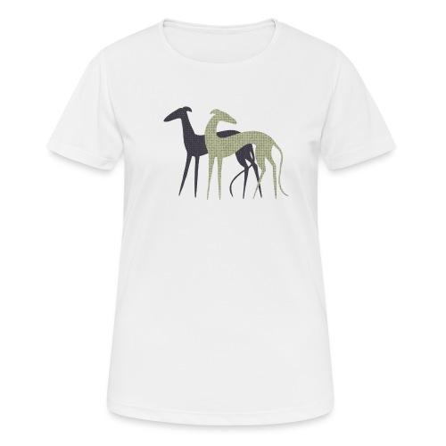 Zwei Windhunde - Frauen T-Shirt atmungsaktiv