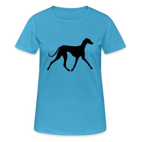 Azawakh - Frauen T-Shirt atmungsaktiv