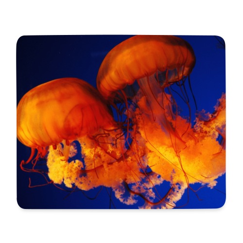 Mousepad Quallen - Mousepad (Querformat)