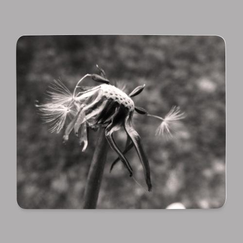 fdfxvcxv jpg - Tapis de souris (format paysage)