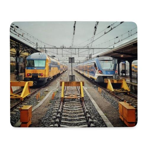 Intercity en Sprinter in Groningen. - Muismatje (landscape)