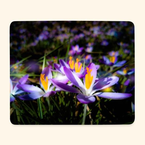 Blumenwiese, lila blühende Blumen, Blüten, floral - Mousepad (Querformat)