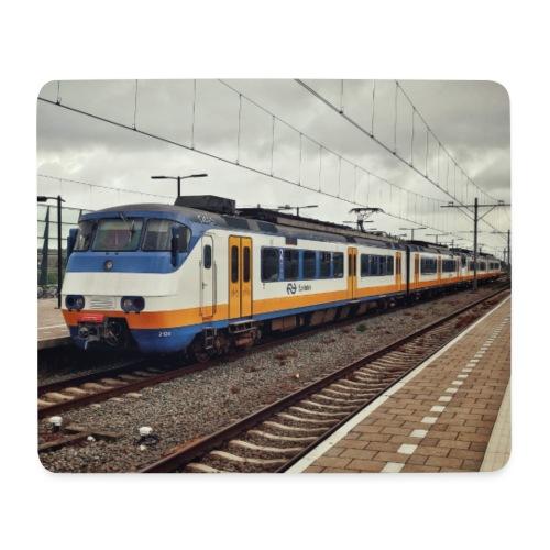 Sprinter in Almere Oostvaarders - Muismatje (landscape)