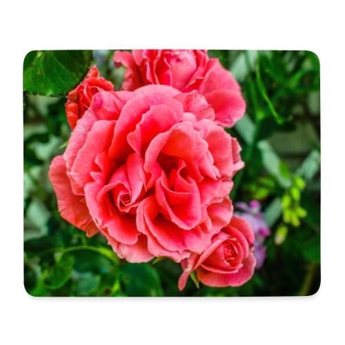 Blomma - Musmatta (liggande format)
