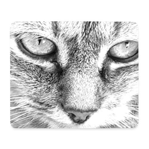 Katze - Mousepad (Querformat)