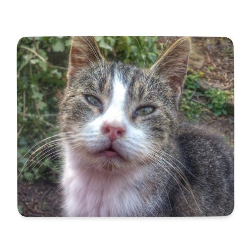 Katze Max - Mousepad (Querformat)