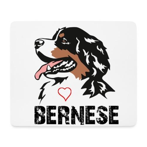 Bernese mountain dog - Muismatje (landscape)