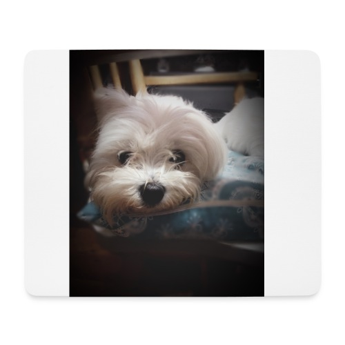 Pure White Pup - Mouse Pad (horizontal)