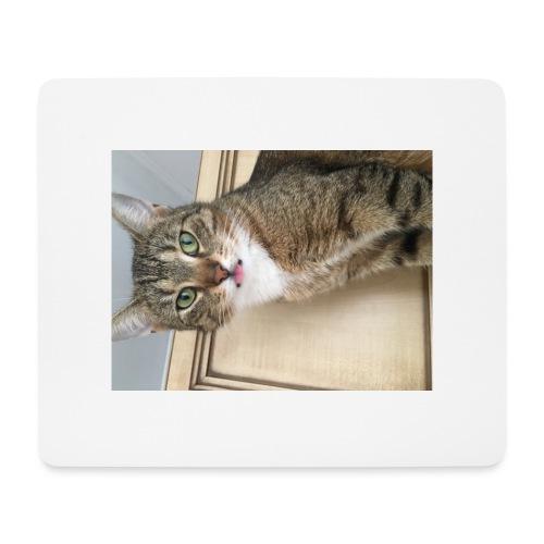 Kotek - Podkładka pod myszkę (orientacja pozioma)