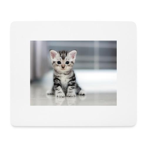 accesoires chat - Tapis de souris (format paysage)