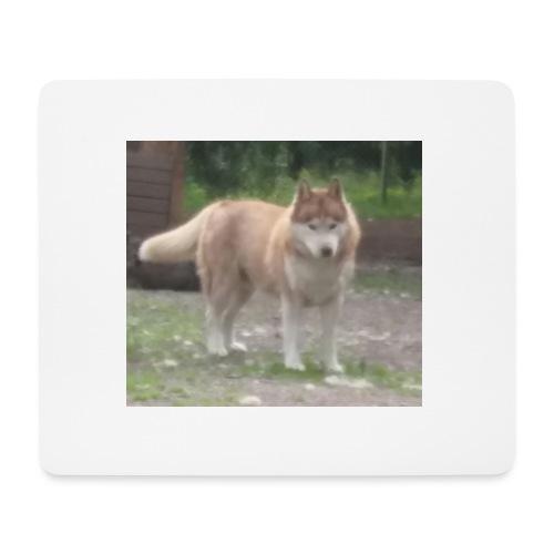 MY DOG - Hiirimatto (vaakamalli)