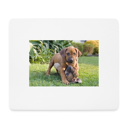 adorable puppies - Mouse Pad (horizontal)