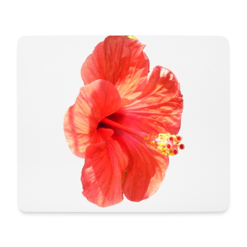 A red flower - Mouse Pad (horizontal)