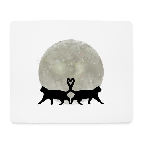 Cats in the moonlight - Muismatje (landscape)