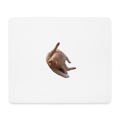 Cat sucking Balls - Alfombrilla de ratón (horizontal)