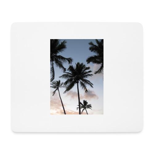 PALMTREES DOMINICAN REP. - Muismatje (landscape)