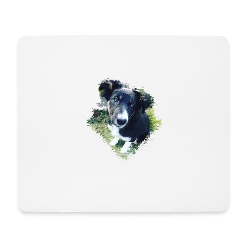 colliegermanshepherdpup - Mouse Pad (horizontal)
