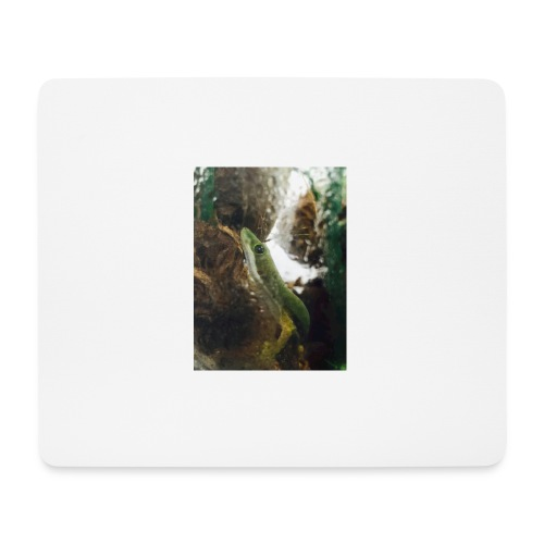 14EBC4BE EEB8 412B B316 C343047450B1 - Mousepad (Querformat)