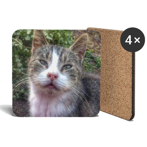 Katze Max - Untersetzer (4er-Set)