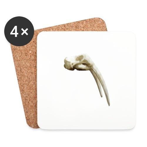 Schedel van een walrus - Onderzetters (4 stuks)